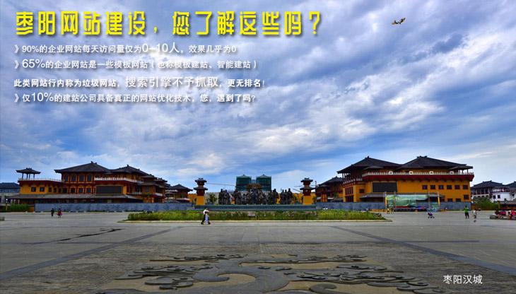 枣阳网站建设